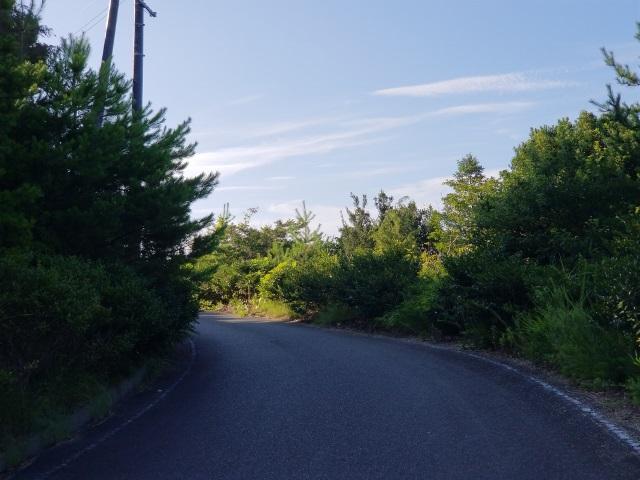 展望台への道1