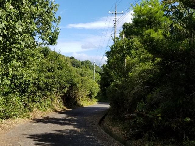 前島展望台への道の草刈り(続き)_after