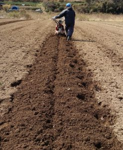 Cultivating_20140307_114823 (658x800)