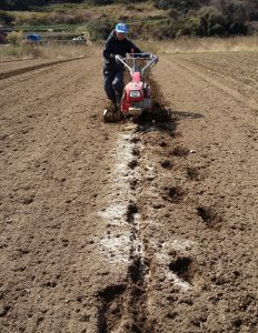Cultivating_20140307_115146 (619x800)