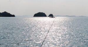 fishing_20201029_143259 (800x426)